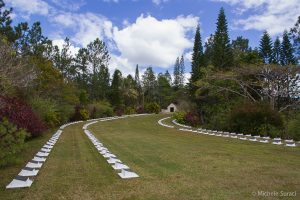 New Zeland Cemetery