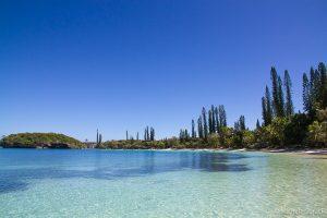 Fantastica Isola dei Pini