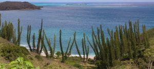 Nuova Caledonia – Tappa 2 – Grande Terre