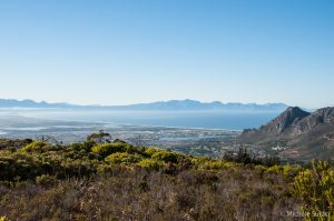 Silvermine - Table Mountain NP
