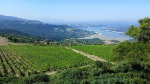 Le campagne intorno a Titignano