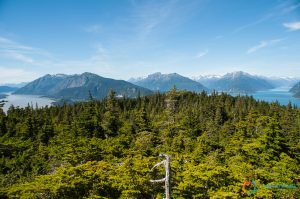 Mt. Riley Trail
