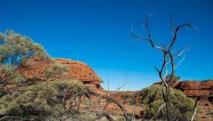 Kata Tjuta e Watarrka NP – Tappa 4 – Australia