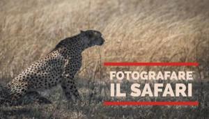 Fotografare il Safari