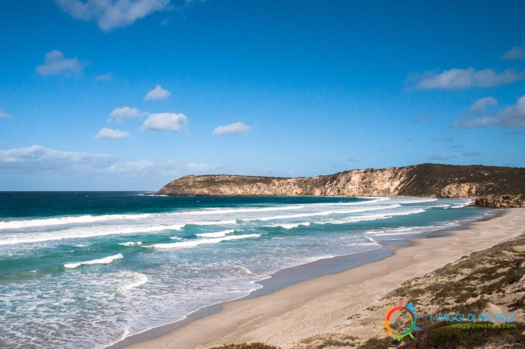 Kangaroo Island in un giorno - Seal Bay