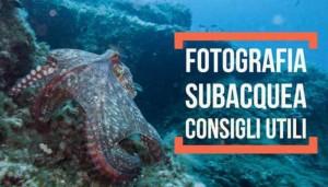 Fotografia Subacquea, consigli utili e tecniche di ripresa