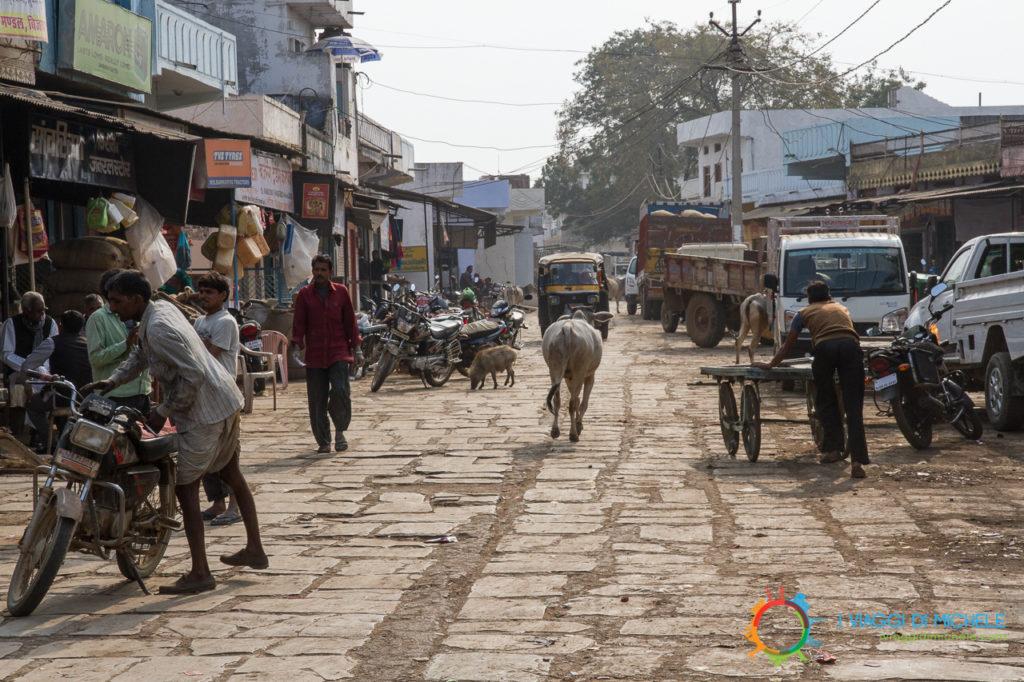 """Viaggio on the road, La """"strada"""" per Bijaipur - India"""