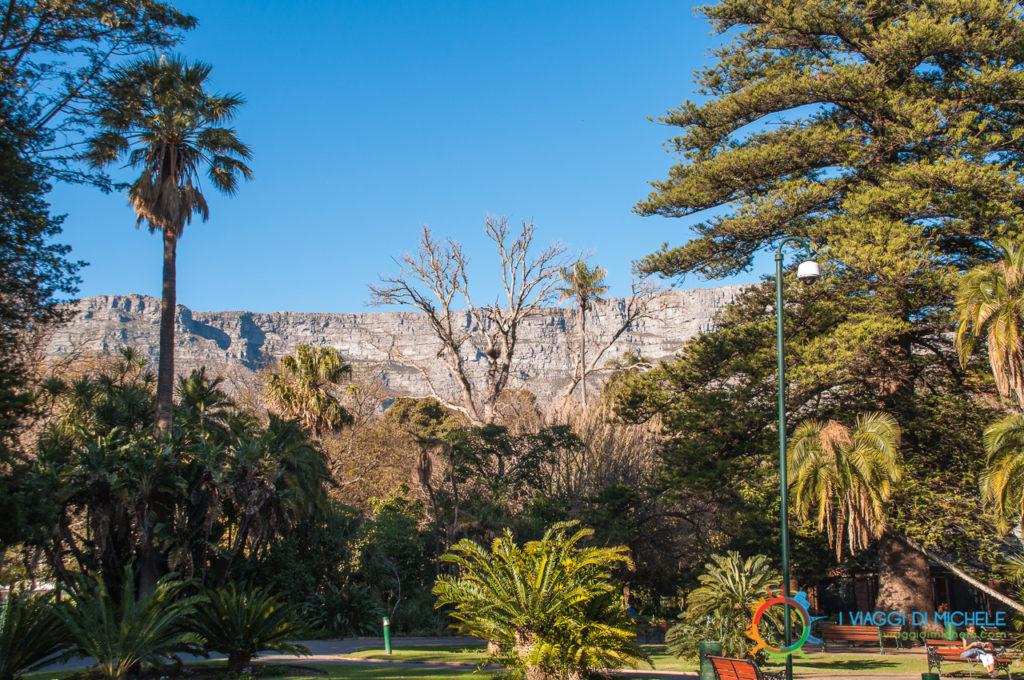 Table Mountain ca Company's Gardens