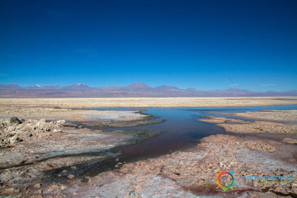 Laguna Chaxa - Laguna Chaxa